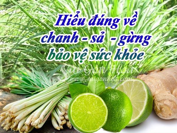 Hieu-Dung-Ve-Chanh-Sa-Gung.jpg