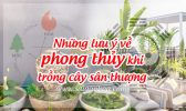Phong Thuy San Thuong