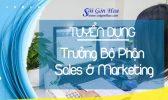 Tuyen Dung Truong Bo Phan Sale Mar