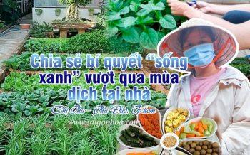 Bi Quyet Song Xanh Mua Covid