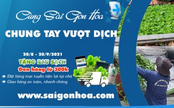 Chung Tay Vuot Dich