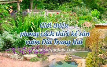 Phong Cach San Vuon Dia Trung Hai