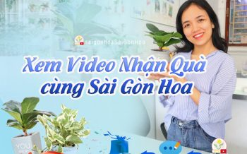 Xem Video Nhan Qua 1