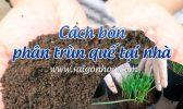 Cach Bon Phan Trun Que
