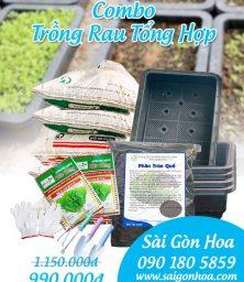 Ban Combo Trong Rau Tong Hop