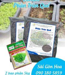 Combo Phan Trun Que
