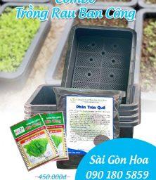 Combo Rau Ban Cong