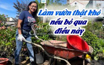 Lam Vuon